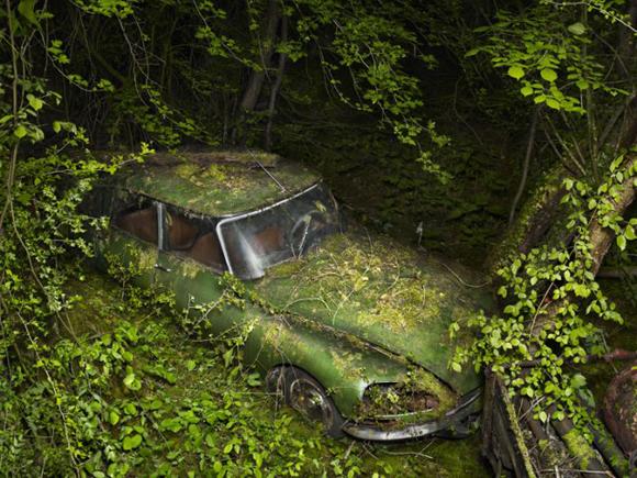Art Car Paradise Parking